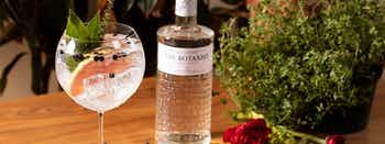 The Botanist and Tonic