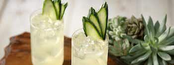 Patrón Cucumber-Coconut Margarita