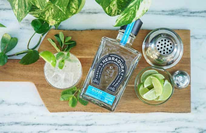 Tequila Herradura Horseshoe Margarita